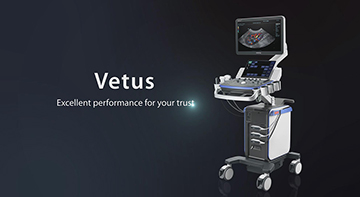 Vetus, Excellent Performance For Your Trust