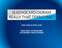 Webinar - Enchocardiogram Scanning Views